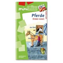 AH Erstes Lesen Pferde/Fußball