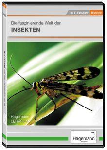 Die faszinierende Welt der Insekten