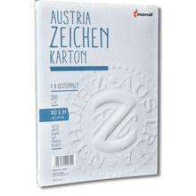 GZ-Zeichenkarton 200 g