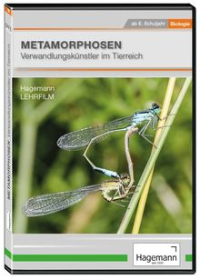 Metamorphosen – Verwandlungskünstler im Tierreich