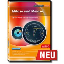 Mitose und Meiose tabletfähig