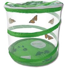 Schmetterlings Zuchtset