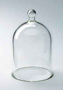 Vakuumglocke, Glas, mit Halteknauf