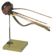 ZoS 48/3 Stechmückenkopf