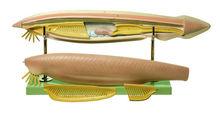 ZoS 59/M Lanzettfischchen